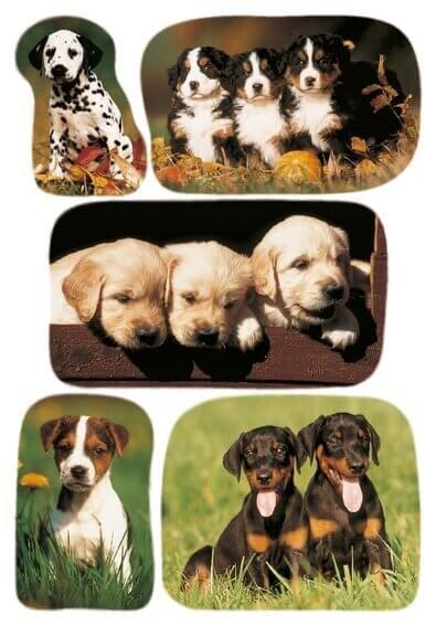 HERMA 3528 10x Sticker DECOR Hundewelpenfotos