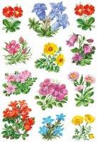HERMA 3582 10x Sticker DECOR Gebirgsblumen