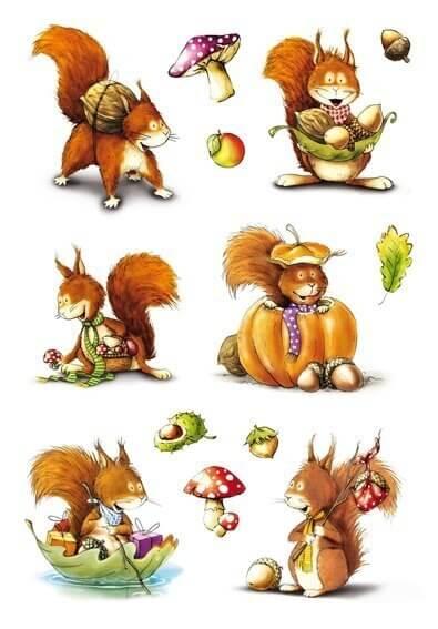 HERMA 3368 10x Sticker DECOR Eichhörnchen