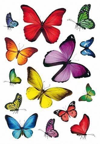 HERMA 3084 10x Sticker DECOR Schmetterlingsvielfalt